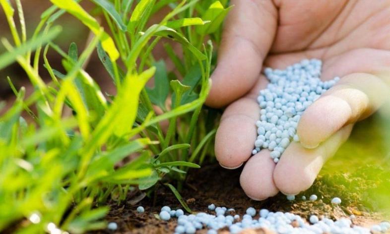 В Украине должны улучшить закон об агрохимикатах