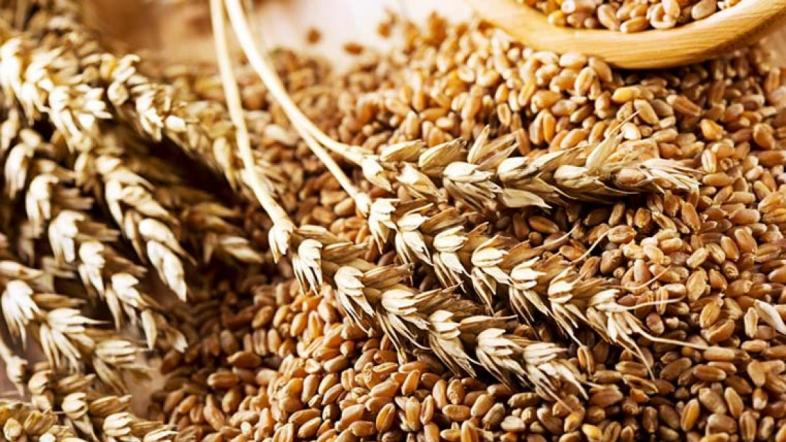 Декабрьские новости о рынке зерновых