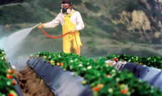 Тенденции рынка средств защиты растений