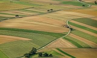 Сколько пахотной земли в Украине
